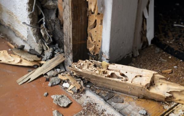 シロアリ被害にあった住宅のイメージ
